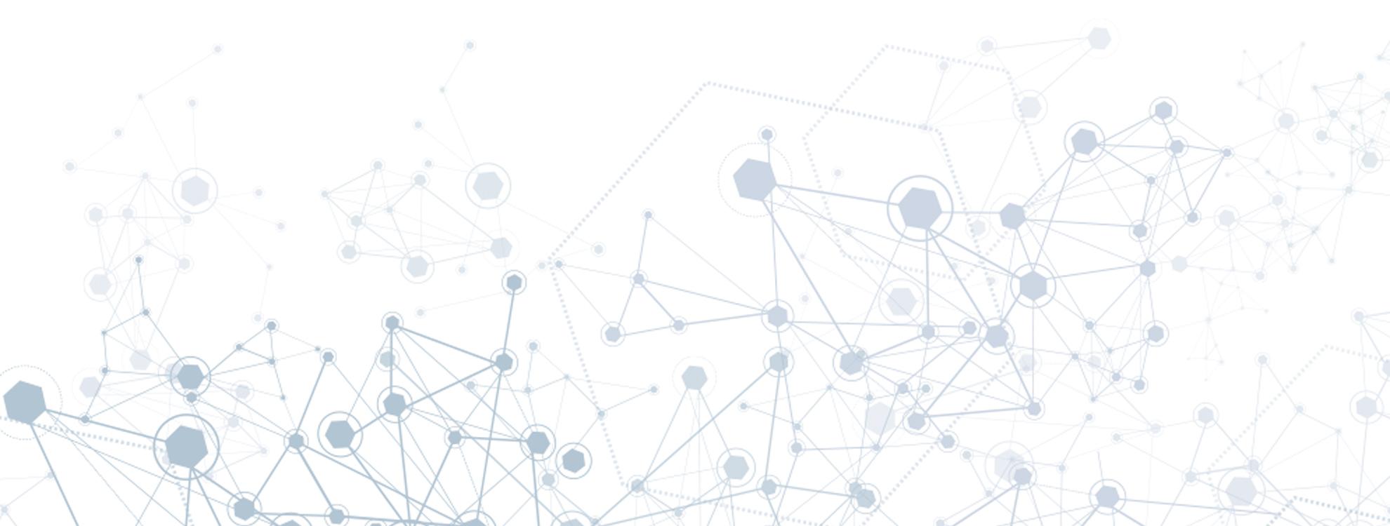 netzwerk - network